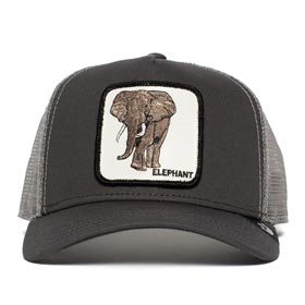 Goorin Bros Berretto Baseball Elephant